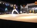 Simply Capoeira